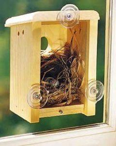 Победитель конкурса на самый лучший домик для птиц