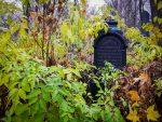 Экскурсия на еврейское кладбище.Как это было...
