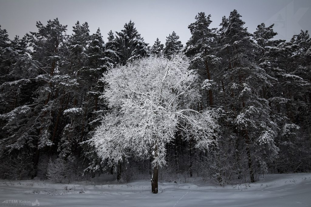 HArCmzJdD48 1024x682 - Фотоэкскурсия «Пейзажная съёмка»